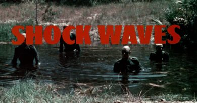 Shock Waves 6