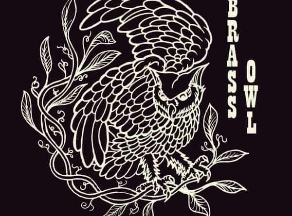 Brass Owl 1