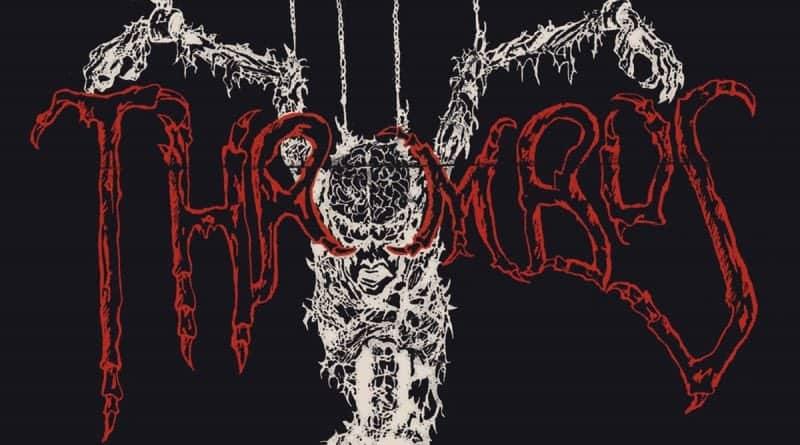 Thrombus 1