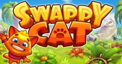 Swappy Cat 1