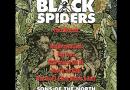 Black Spiders 1